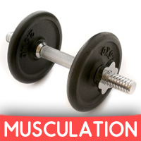 Cours Musculation