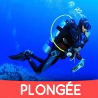 Cours Plongée